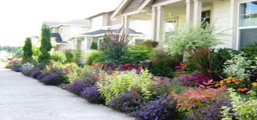 effect of landscaping on property value